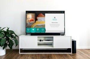 Nevaya TV software