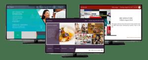 Nevaya TV on TV system
